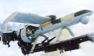 Фото самолёта Як-061 (Пчела-1Т)